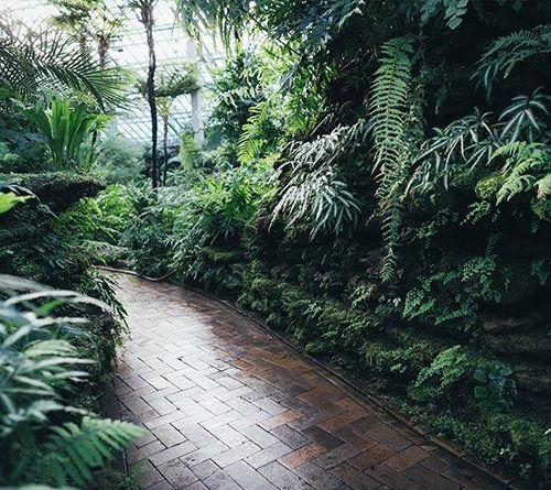 Beheer en onderhoud bungalowparken